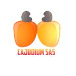CAJUDIUM SAS – Institut 2iE